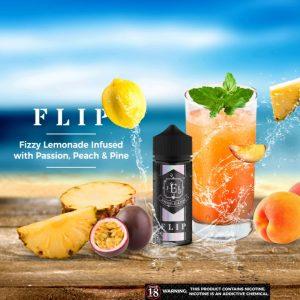 FLIP - A3 Poster